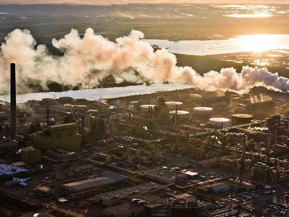 We Celebrate Ottawa's Crucial Step towards Zero Emissions